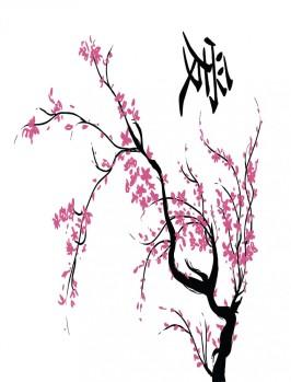 MOI Image